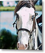 A Horse Is A Horse Of Course Metal Print