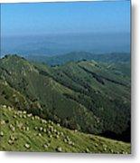 Aerial View Of Mountain Range Metal Print