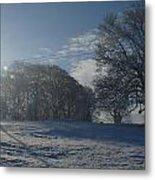 An Irish Winter Scene Metal Print