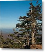 Appalachian Mountains From Mount Mitchell  Metal Print