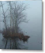 As The Fog Lifts Metal Print