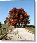 Autumn Drive Metal Print