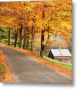 Autumn Road Metal Print by Brian Jannsen