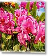 Beautiful Array Of Purple Butterfly Orchids Metal Print