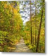 Beautiful Autumn Forest Mountain Stair Path At Sunset Metal Print