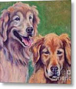 Brothers Metal Print by Mindy Sue Werth