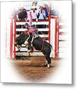 Bull Riding Metal Print