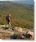 Cadillac Mountain, Acadia National Park Metal Print