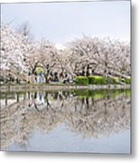 Cherry Blossoms In Tokyo Metal Print