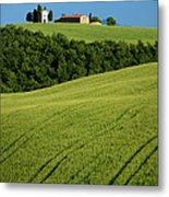 Church In The Field Metal Print