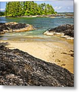 Coast Of Pacific Ocean On Vancouver Island Metal Print by Elena Elisseeva