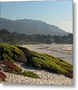 Coastal View - Ice Plant  Metal Print