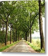 Cobblestone Country Road Metal Print