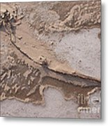 Cold Blew The Wind Metal Print