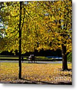 Colorful Fall Autumn Park Metal Print