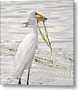 Colossal Catch Metal Print