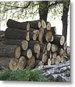 Cut Tree Trunks Piled Up For Further Processing After Logging Metal Print