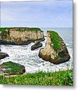 Dramatic Panoramic View Of Shark Fin Cove Metal Print by Jamie Pham