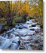 Fall At Big Pine Creek Metal Print by Cat Connor