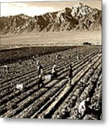 Farm Workers And Mt Williamson 1940s Metal Print