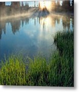 First Light Metal Print by Mike  Dawson