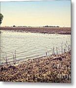 Flooded Farmland Metal Print