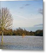 Flooded Field In Rural Essex Metal Print