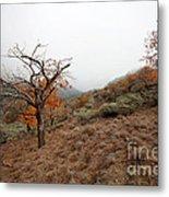 Foggy Landscape Metal Print