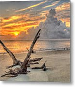 Folly Beach Driftwood Metal Print