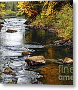 Forest River In The Fall Metal Print