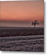 Frozen Time Metal Print