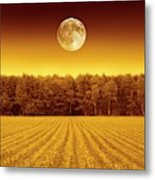 Full Moon Over A Field Metal Print
