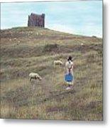 Girl With Sheeps Metal Print