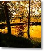 Golden Pond 3 Metal Print