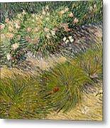 Grass And Butterflies Metal Print
