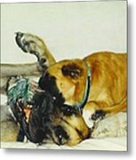 Great Dane And Australian Sheperd Metal Print