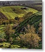 Green Valley  Metal Print