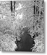 Heavy With Snow Metal Print