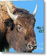 Herd Its Your Birthday Metal Print