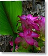 Hidden Lilly Metal Print