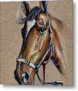 Horse Face - Drawing  Metal Print