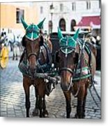 Horses And Carriage In Vienna Metal Print