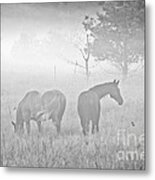 Horses In The Fog Metal Print