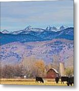 Hot Air Balloon Rocky Mountain Country View Metal Print