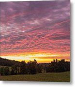 Hunting Dawn Metal Print