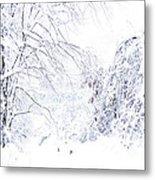 Hurricane Sandy Snow  Metal Print