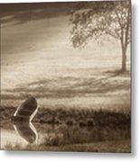 In Quiet Solitude Metal Print
