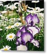 Iris And Daisies Metal Print