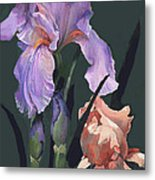 Iris Study Metal Print by Suzanne Schaefer