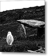 Irish Standing Stones Metal Print by Patricia Griffin Brett